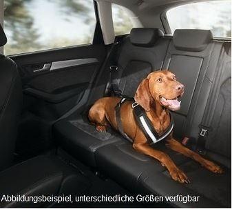 Hundeschutzgurt Schutzgurt für Hunde, Größe L (für große Hunde)